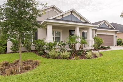 Wesley Chapel Single Family Home For Sale: 1612 Virginia Willow Drive