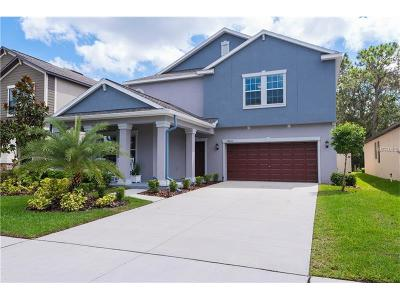 Riverview Single Family Home For Sale: 14250 Blue Dasher Drive