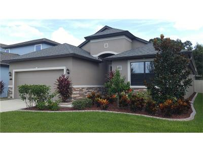 Brandon Single Family Home For Sale: 816 Vino Verde Circle