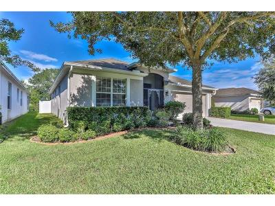 Brooksville Single Family Home For Sale: 566 Sea Holly Drive