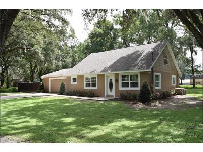 Valrico Single Family Home For Sale: 412 Old Mulrennan Road