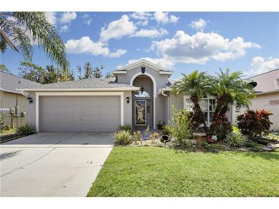 Wesley Chapel Single Family Home For Sale: 29426 Crossland Drive