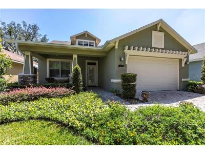 Tampa Single Family Home For Sale: 916 Oak Stone Drive