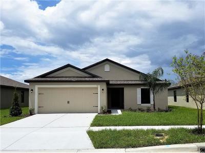 Groveland Single Family Home For Sale: 519 Delta Avenue