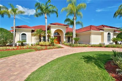 Lutz FL Single Family Home For Sale: $984,900
