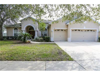 Hernando County, Hillsborough County, Pasco County, Pinellas County Single Family Home For Sale: 3412 Eastmonte Drive