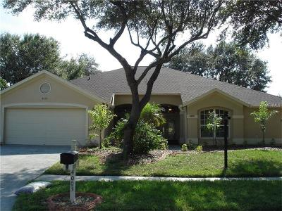 Valrico Single Family Home For Sale: 4003 Canter Court
