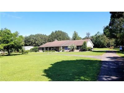 Zephyrhills Single Family Home For Sale: 39943 Otis Allen Road