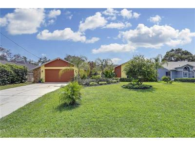 Spring Hill Single Family Home For Sale: 1374 Aladdin Road