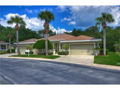 Hernando County, Hillsborough County, Pasco County, Pinellas County Rental For Rent: 12713 Aston Creek Drive