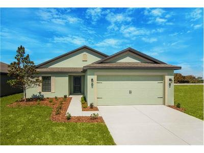 Hernando County, Hillsborough County, Pasco County, Pinellas County Single Family Home For Sale: 912 Wynnmere Walk Avenue