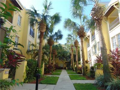 Rental For Rent: 623 Casabella Circle