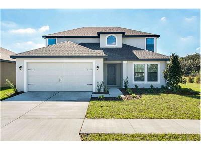 Lake County, Orange County, Osceola County, Polk County, Seminole County Single Family Home For Sale: 2503 Bracknell Forest Trail