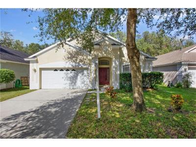 Lutz Single Family Home For Sale: 2516 Deer Forest Drive