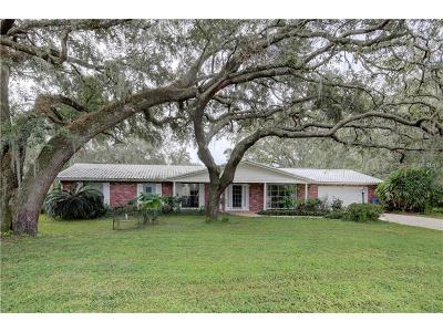 Tampa Single Family Home For Sale: 12040 Riverhills Drive