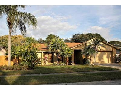 Hillsborough County Single Family Home For Sale: 6525 Seafairer Drive