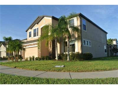 Tampa Single Family Home For Sale: 4733 Woods Landing Lane