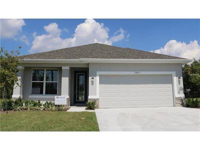 Hillsborough County, Pasco County, Pinellas County Single Family Home For Sale: 3821 Ohio Avenue