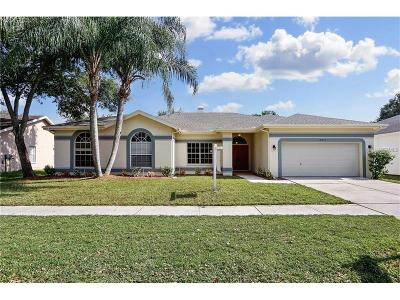 Tampa FL Single Family Home For Sale: $289,500