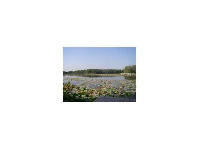 Hernando County, Hillsborough County, Pasco County, Pinellas County Residential Lots & Land For Sale: 4765 School Road