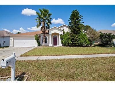 Valrico Single Family Home For Sale: 4328 Brandon Ridge Drive