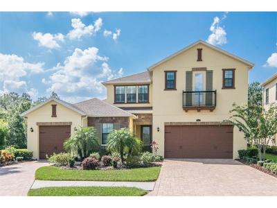 Tampa Single Family Home For Sale: 14211 Avon Farms Drive