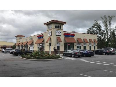 Tampa FL Commercial For Sale: $20
