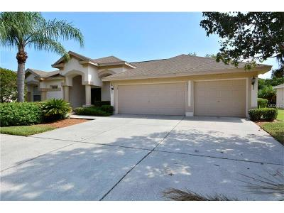 Lutz Single Family Home For Sale: 19211 Inlet Cove Court
