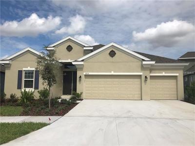 Apollo Beach Single Family Home For Sale: 6818 Ebb Tide Avenue
