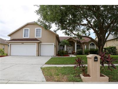 Valrico Single Family Home For Sale: 2225 Golf Manor Boulevard