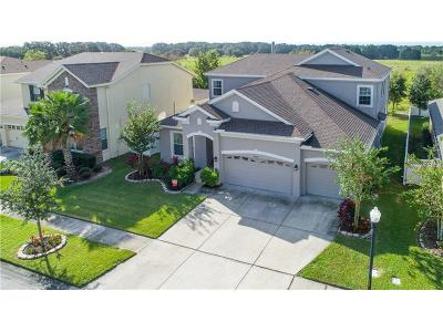 Wesley Chapel Single Family Home For Sale: 32550 Summerglade Drive