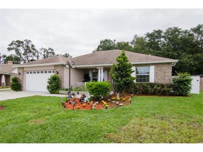 Plant City Single Family Home For Sale: 1218 Spotted Lilac Lane