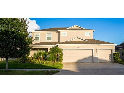 Gibsonton Single Family Home For Sale: 7506 Tangle Bend Drive