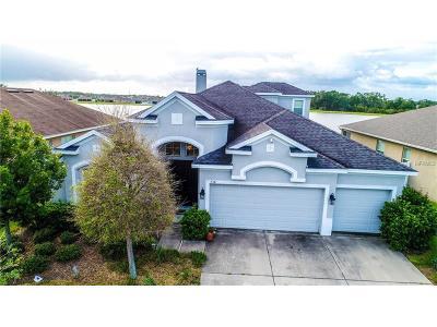 Ruskin Single Family Home For Sale: 738 Tanana Fall Drive