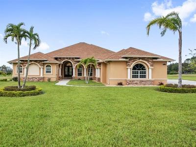 Dade City Single Family Home For Sale: 9917 Preakness Stakes Way