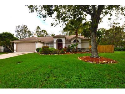 Plant City Single Family Home For Sale: 2747 Horseshoe Drive