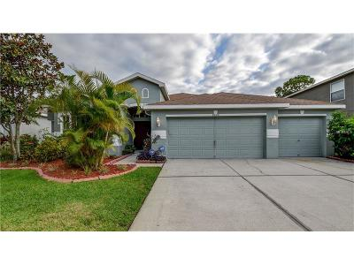 Tampa Single Family Home For Sale: 8820 N River Road