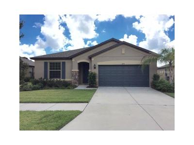 Valrico Single Family Home For Sale: 2251 Landside Drive