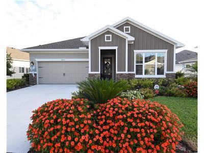 Odessa Single Family Home For Sale: 14651 Trails Edge Boulevard