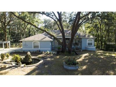 Lutz Single Family Home For Sale: 3404 Crenshaw Lake Road