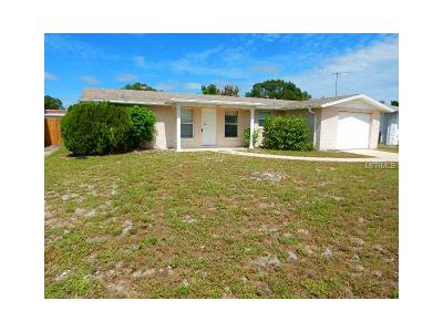 Hernando County, Hillsborough County, Pasco County, Pinellas County Single Family Home For Sale: 7741 Tyson Drive