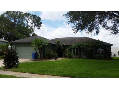Tampa Single Family Home For Sale: 9205 Cypresswood Circle