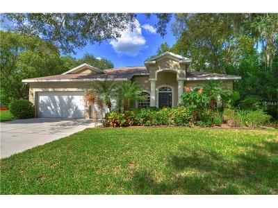 Riverview Single Family Home For Sale: 10804 La Vista Loop