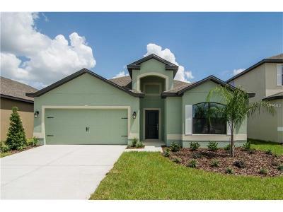 Groveland Single Family Home For Sale: 507 Delta Avenue