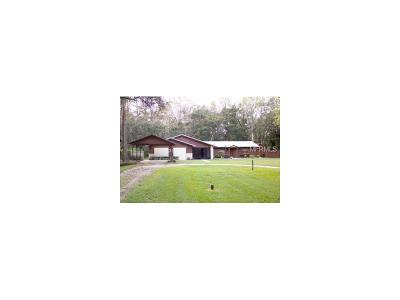 Plant City Single Family Home For Sale: 3209 Jap Tucker Road