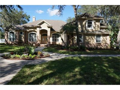 Single Family Home For Sale: 19913 Arbor Path Place