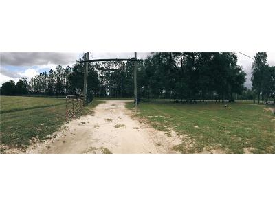 Thonotosassa Residential Lots & Land For Sale: 14023 McIntosh Road