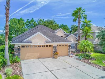 Land O Lakes Single Family Home For Sale: 23503 Vistamar Court