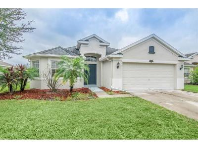 Tampa Single Family Home For Sale: 10908 Observatory Way