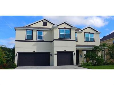 Apopka Single Family Home For Sale: 1751 Water Rock Drive